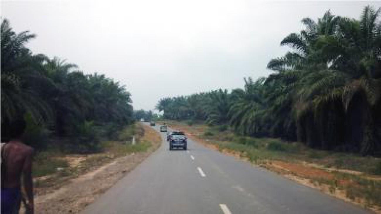 Moratorium Izin Pertambangan, Perkebunan dan Kehutanan