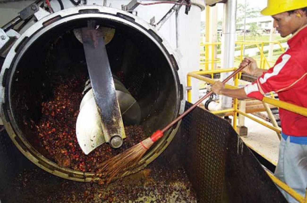2020, Indonesia Tetap Produsen Sawit Terbesar di Dunia