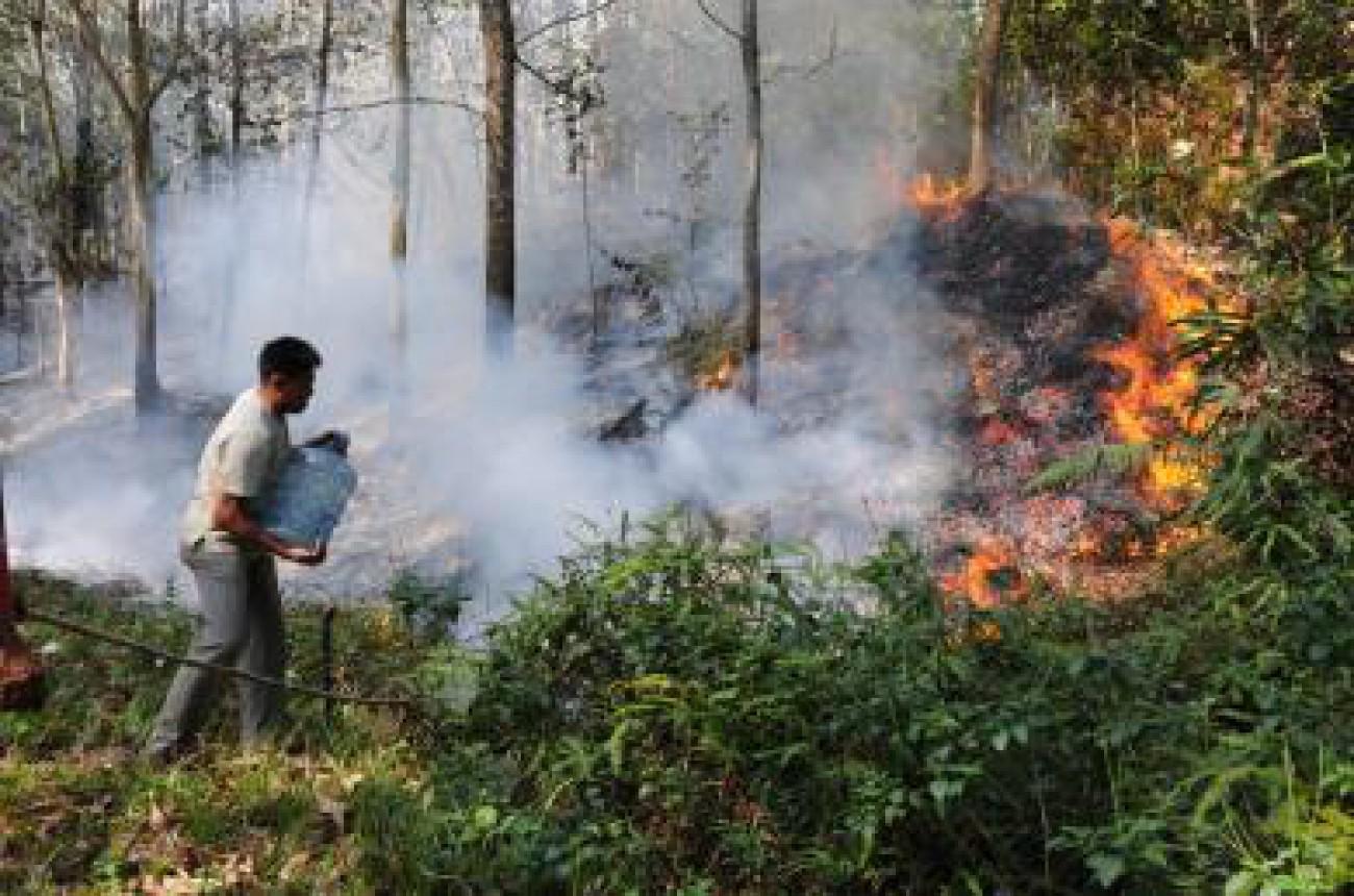 Buka Kebun Dengan Cara Membakar, Terancam 10 Tahun Penjara
