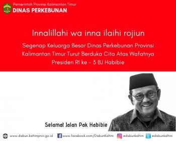 Selamat Jalan Pak Habibie