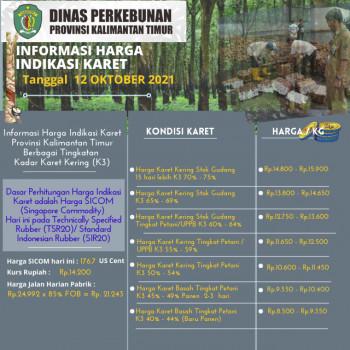 Informasi Harga Indikasi Karet Per 12 Oktober  2021