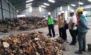 Disbun Kunjungi Pabrik Pengolahan Karet PT Multi Kusuma Cemerlang