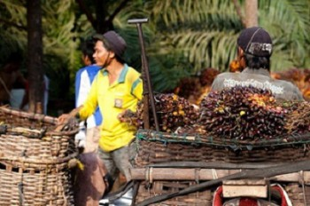 Agroindustri Mampu Sejahterakan Rakyat