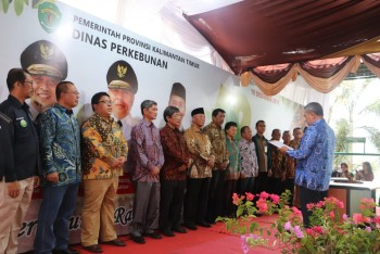 Forum Perkebunan Berkelanjutan Resmi Dilantik