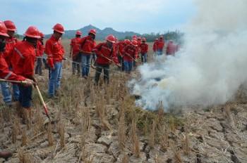 Kaltim Akan Kembangkan Kebijakan Mengatasi Kebakaran Hutan dan Lahan