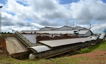 2016, Kaltim Miliki 87 Pabrik Minyak Kelapa Sawit