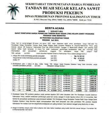 Informasi Harga TBS Kelapa Sawit Bagi Pekebun Bermitra Bulan Juli 2021