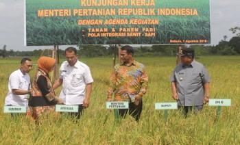 Kunjungan Kerja Menteri Pertanian ke Kabupaten Penajam Paser Utara