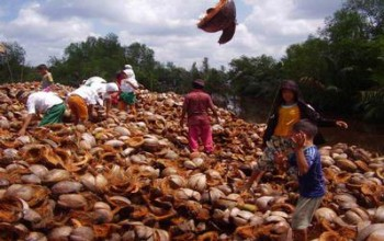 Kemenperin Kembangkan Industri Sabut Kelapa