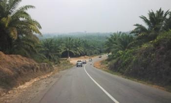 Agroindustri Potensi Strategis Pacu Perekonomian Daerah