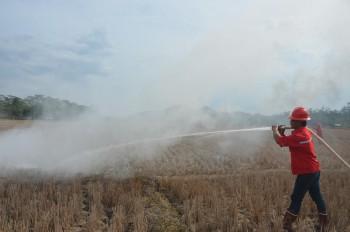 Pelatihan Pengendalian Kebakaran Lahan dan Kebun Tahun 2015