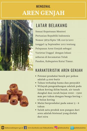 Mengenal Varietas Unggul Nasional asal Kalimantan Timur : AREN GENJAH